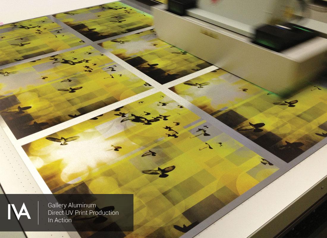 Digital Art & Graphics - Impact Visual Arts