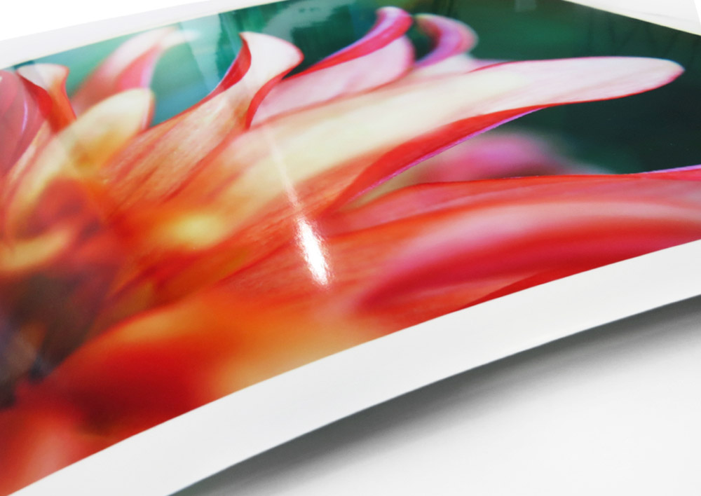 Epson Premium Gloss Paper