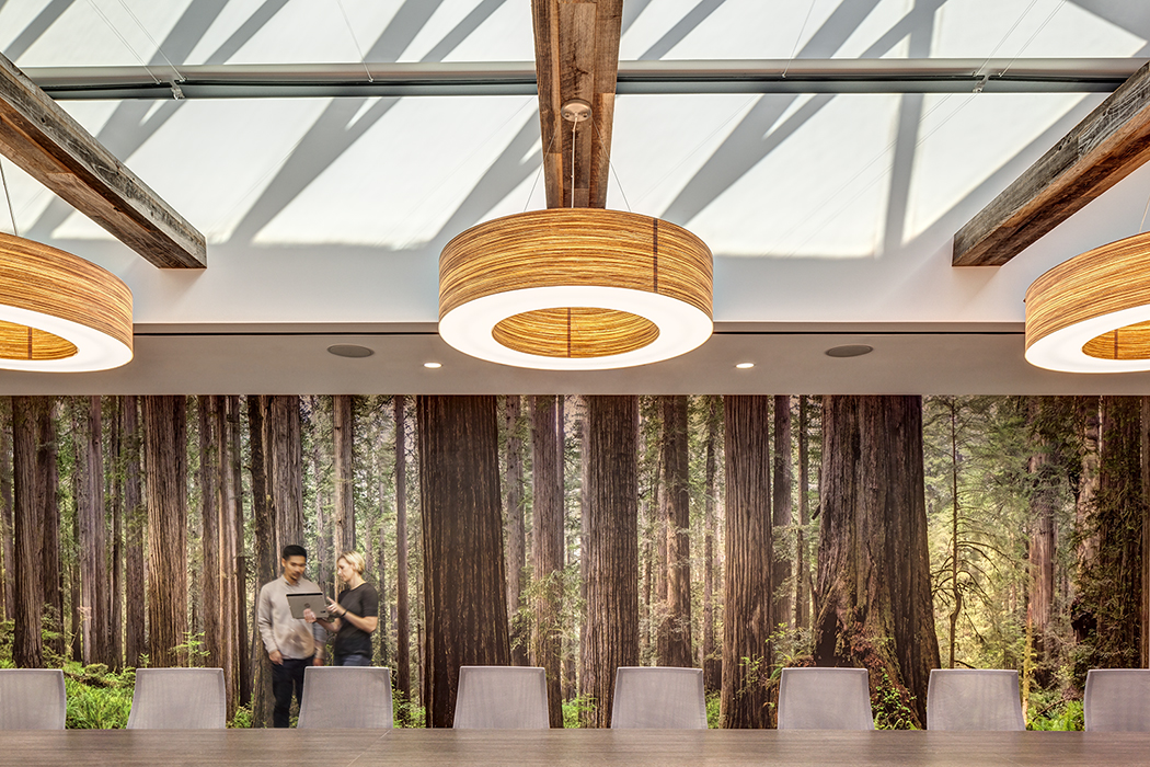 Wall Murals IVA of trees fill the wall of a conference meeting room
